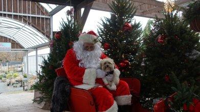 Simon & Santa